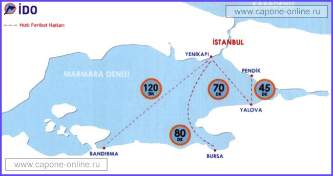 Карта морских автобусов в